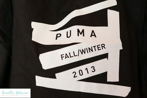Puma 2013